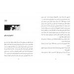Al Salwa Books - The Mystery of Falcon's Eye