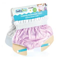 BabyJem 2 Piece Luxury Training Pant, 2 Age Pink Toilet Training Slip
