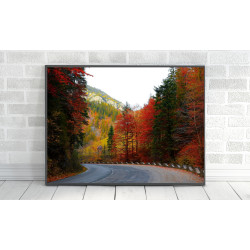ExtraOrdinary Decorative Wood Framed Wall Art Prints, Mix Fall Posters, A3 size