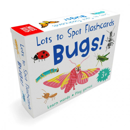 Miles Kelly - Lots To Spot Flashcards Bugs